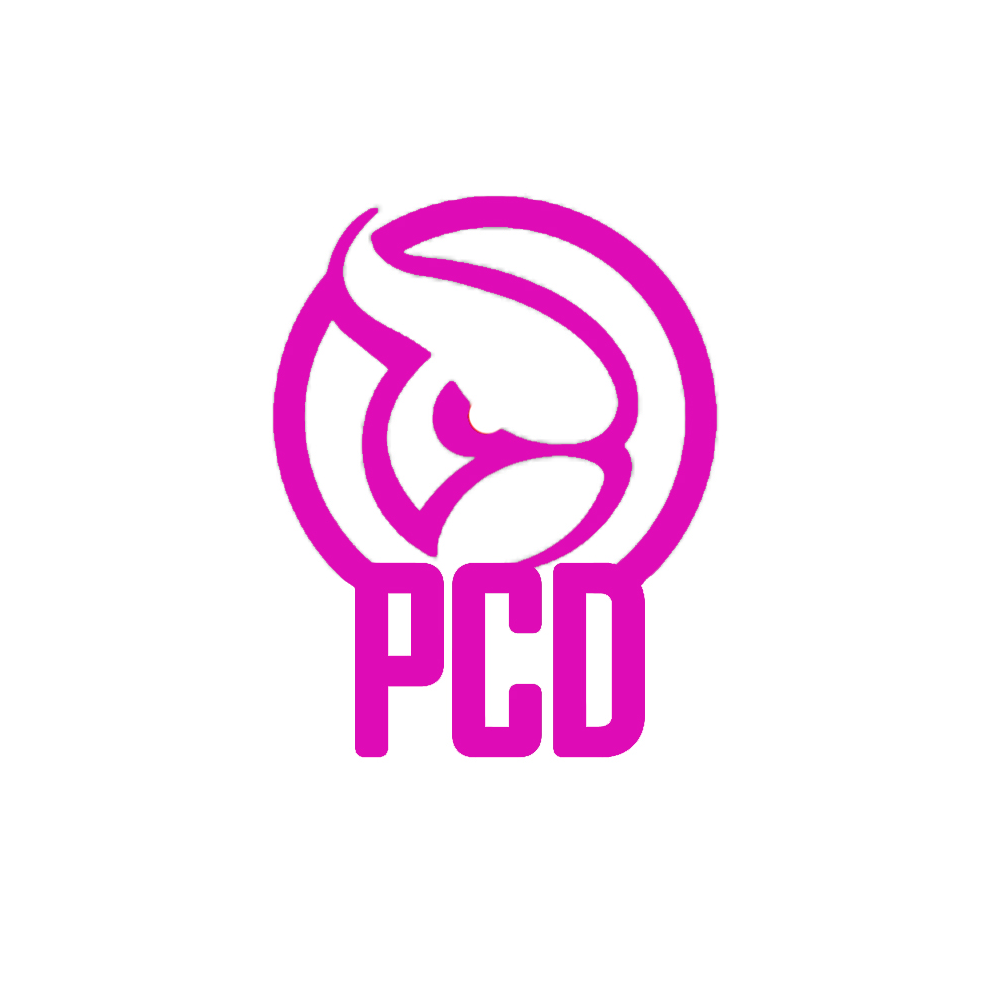 PCD Detailing Store